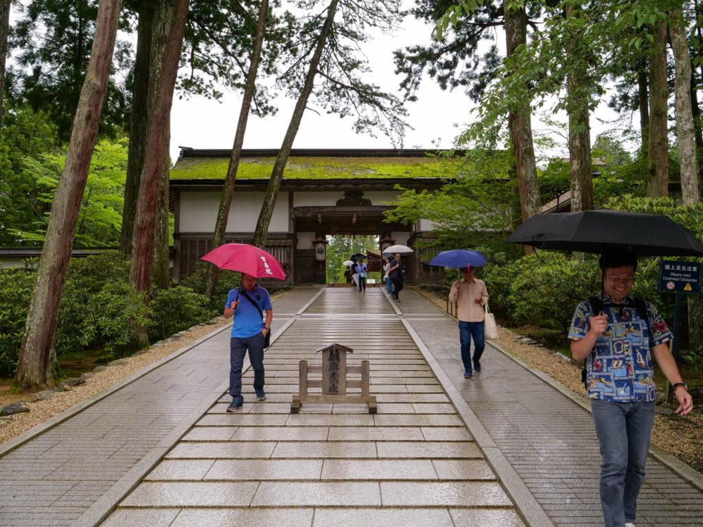 帰るころに雨が強くなってきました。