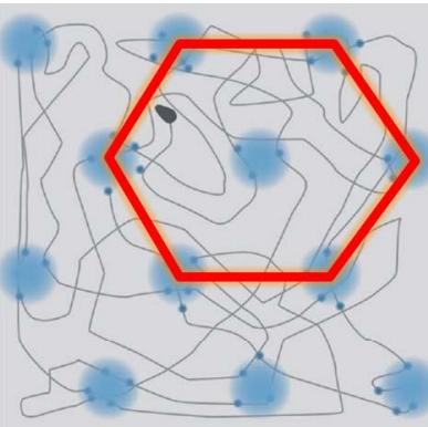 図12 格子細胞の概念図(〝脳の中で、自分が今どこにいるのかを把握し 海馬でマップを作成する複数の空間把握細胞の発見″